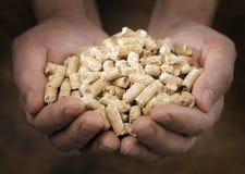 Granules en bois Photographie stock libre de droits
