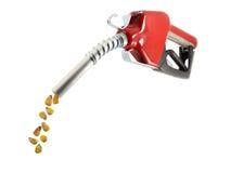 Combustible del maíz Foto de archivo libre de regalías