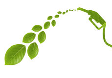 Combustible verde con las hojas II Fotografía de archivo