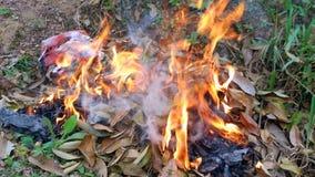Combustion de feuilles Photographie stock