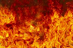 Combustion de flammes du feu image libre de droits