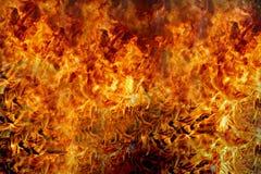 Combustion de flammes du feu photos libres de droits