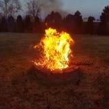 Combustion de l'arbre de Noël de 2018 image stock