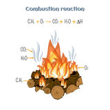 Combustion reaction - wood burning at fire camp. Types of chemical reactions, part 5 of 7. Educational chemistry for kids. Cartoon vector illustration in flat Stock Images