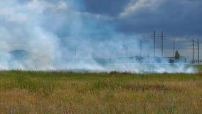 Combustione del campo con il fumo