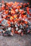 Combustione del carbone di legna Immagine Stock