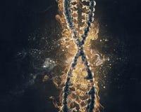 Combustione del DNA in fuoco 3d rendono Fotografia Stock Libera da Diritti