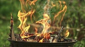 Combustione del fuoco del BBQ in natura video d archivio