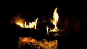 Combustione del fuoco dentro un camino video d archivio