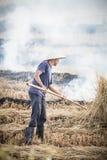 Combustione del raccolto del Vietnam immagine stock