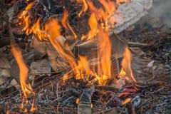 Combustione dell'erba asciutta Fotografie Stock