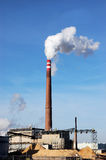 Combustione della biomassa immagini stock libere da diritti