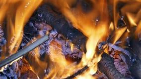 Combustione della legna da ardere nel camino archivi video