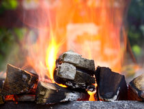 Combustione della legna da ardere nell'addetto alla brasatura fotografia stock libera da diritti