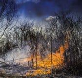 Combustione di incendio violento nel campo Fotografia Stock Libera da Diritti