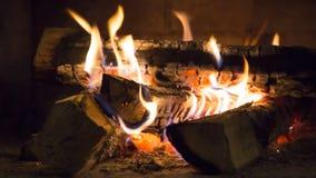 Combustione reale del fuoco di legno Immagini Stock Libere da Diritti