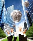 Começ o cérebro Imagem de Stock