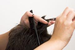 Começ o corte de cabelo Imagens de Stock Royalty Free