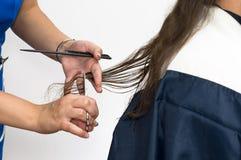 Começ o corte de cabelo Fotografia de Stock