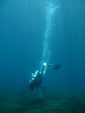 Começ o mergulho Fotos de Stock