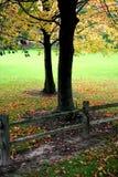 Começo do outono fotografia de stock
