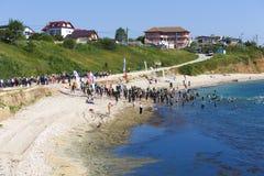 Começo do Triathlon no Mar Negro Fotos de Stock Royalty Free