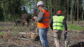 Começo dos oficiais da floresta que verifica a floresta destruída verificação filme