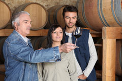 Come assaggiare vino Fotografie Stock Libere da Diritti