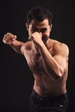 Come On and Fight! Stock Images