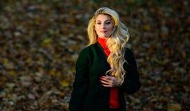 Come la riparazione ha candeggiato velocemente e sicuro i capelli Cura di capelli di autunno importante evitare acconciatura cres fotografie stock libere da diritti