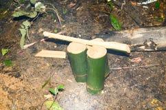Come vivere nelle foreste e nelle sussistenze Immagini Stock Libere da Diritti