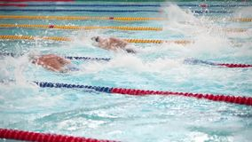Comece nadar por um estilo livre s vídeos de arquivo
