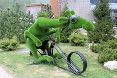 A green camel on a bicycle. Comedic green camel in helmet rides a bicycle, landscape decoration stock photos