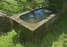 Comedoiro de pedra Foto de Stock Royalty Free