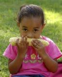 Comedor do milho Fotos de Stock