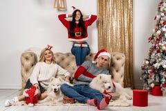 Comemoração do Natal feliz de jovens com cães e presentes imagem de stock royalty free