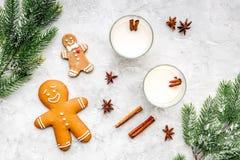 Comemore a noite do inverno do ano novo com bebida da gemada nos vidros cookie do pão do gengibre, ramo spruce e canela pedra Fotografia de Stock Royalty Free