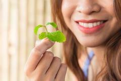 Comendo as folhas de hortelã para a boa respiração fresca dental imagem de stock royalty free