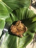 Comendo o atum em pratos da palma foto de stock