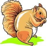 Comendo o esquilo ilustração stock