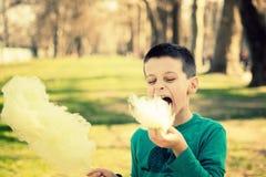 Comendo o sugarwool Imagens de Stock