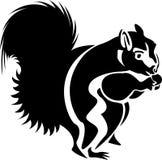 Comendo o sumário do esquilo ilustração do vetor