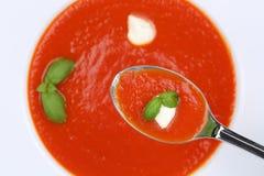 Comendo a refeição da sopa do tomate com os tomates frescos na colher de cima de Fotografia de Stock