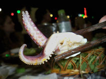 Comendo tentáculos Foto de Stock Royalty Free