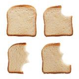 Comendo uma fatia de pão Imagem de Stock Royalty Free