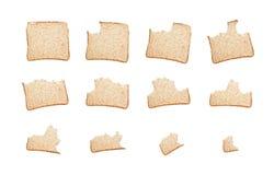 Comendo uma fatia de pão de wholemeal Fotos de Stock