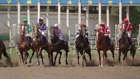 Comenzar carrera de caballos Cámara lenta almacen de metraje de vídeo