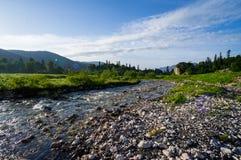 Comenzar el río Blanco Fotografía de archivo