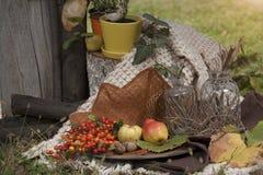 Comer no jardim Imagens de Stock