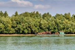 Comercial fartyg som laddar upp på nytt huggit av trä horisontalVI Fotografering för Bildbyråer